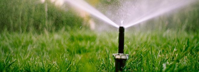 TIPS AND TECHNIQUES FOR WATERING YOUR LAWN